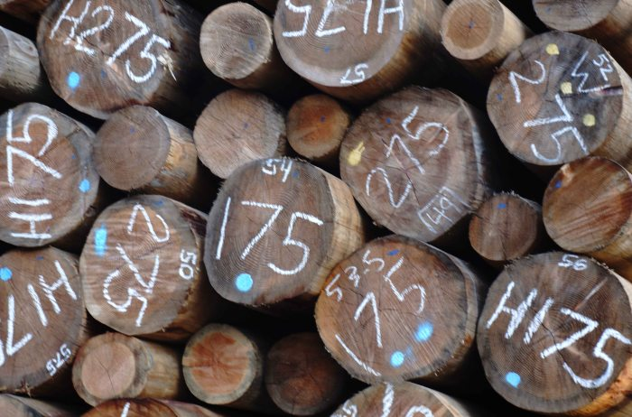 Logs-10152013