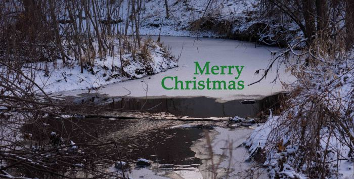 TurningStreamMerryChristmas-2-12242014